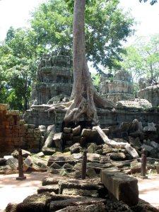 Ангкор. Храм Та пром